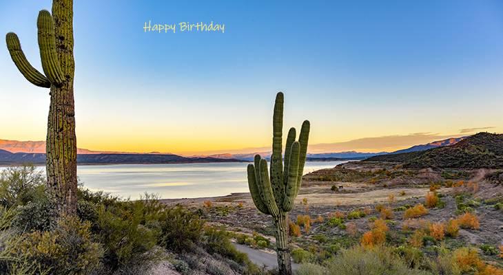 happy birthday wishes, birthday cards, birthday card pictures, famous birthdays, cactus, tonto basin, arizona, sunset, desert