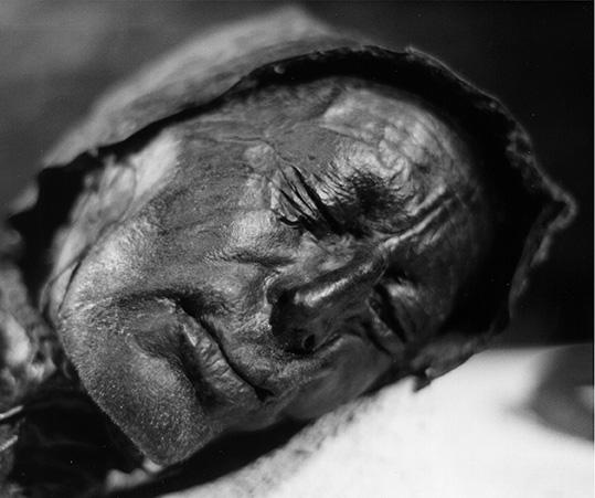 tollund man, denmark bog man, danish peat bogs, iron age corpses, mummified body, silkeborg museum
