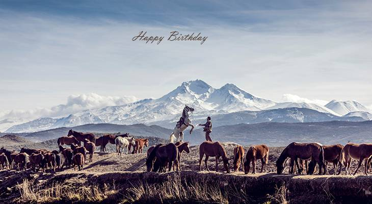 happy birthday wishes, birthday cards, birthday card pictures, famous birthdays, horses, animals, turkey, mount ericiyes,