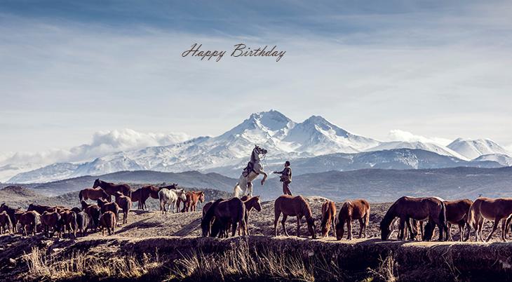 happy birthday wishes, birthday cards, birthday card pictures, famous birthdays, horses, animals, turkey, mount ericiyes,