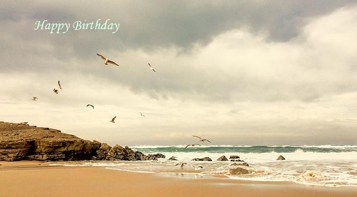 happy birthday wishes, birthday cards, birthday card pictures, famous birthdays, wild birds, beach, sand