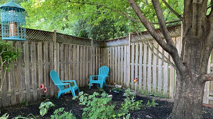 wild bird feeders, maple tree, tulip tree, ontario, garden, zen oasis, muskoka chairs, teal, mulch