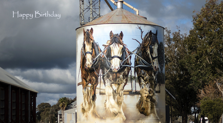 happy birthday wishes, birthday cards, birthday card pictures, famous birthdays, work horses, silo, painting, clydesdales, victoria australia, goorambat