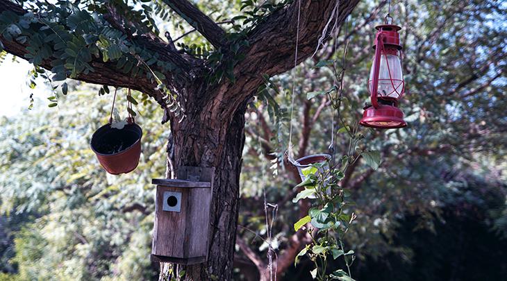 bird feeders, reuse, recycle, ideas, reduce waste, eco friendly, environmentally friendly