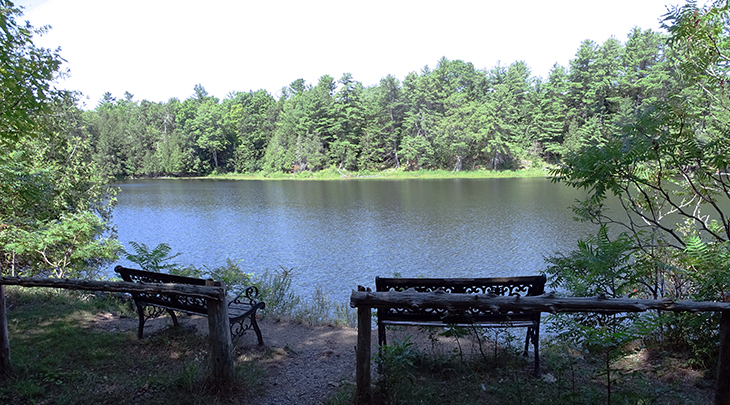 cataraqui trail, bicycle, trail cycling, walk, hike, hiking, tour, eastern ontario, explore, adventure, nature, scenery, lake, trees, bench