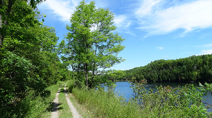 cataraqui trail, bicycle, trail cycling, walk, hike, hiking, tour, eastern ontario, explore, adventure, nature, scenery, chaffeys locks,