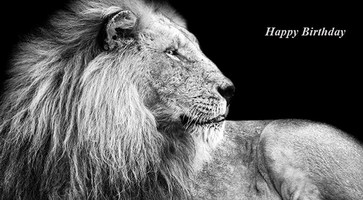happy birthday wishes, birthday cards, birthday card pictures, famous birthdays, lion, big cat, wild animal