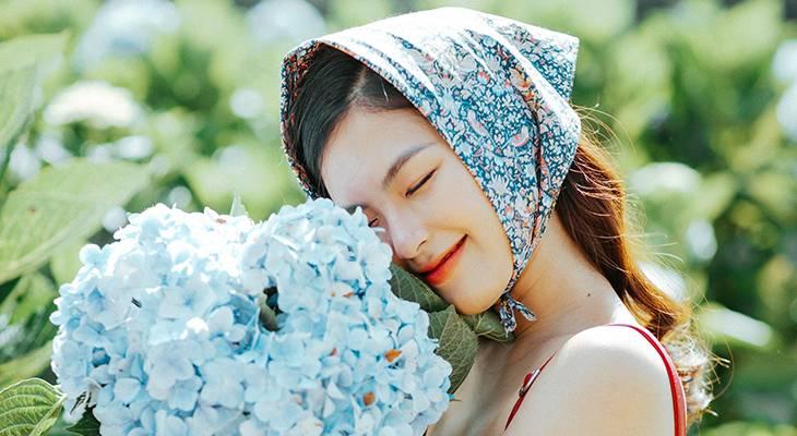 blue flowers, hydrangeas, garden flower