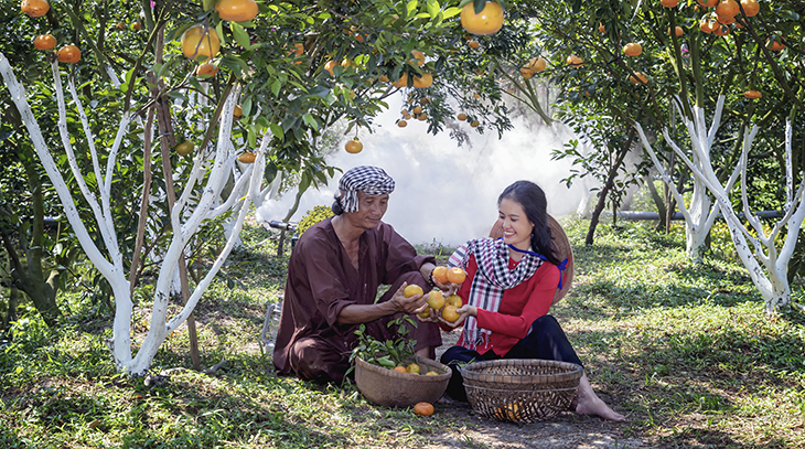 family, gardening, oranges, nature