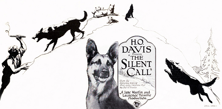 strongheart, 1921, movie dog, silent films, german shepherd, police dog, dog movies, the silent call, director, laurence trimble, animal trainer, screenwriter, jane murfin, illustrations, samuel cahan, first national pictures
