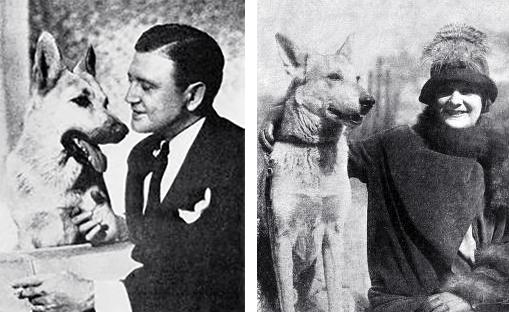 ace the wonder dog, 1938, movie dog, 1930s films, blind alibi, german shepherds, police dogs, animal actors, strongheart grandson, american actor, richard dix, lightning, gloria gould bishop, 1925