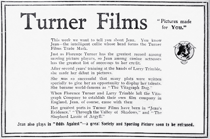 jean, the vitagraph dog, rough collie, silent movies, dog film stars, silent film stars, florence turner, silent films, turner film company, 1910s film studios, laurence trimble dog