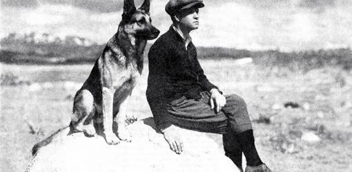 strongheart, 1921, movie dog, silent films, german shepherd, police dog, laurence trimble, animal trainer, writer, silent movies, scenarios, screenwriter, director, 1920s movies, the silent call, brawn of the north, the love master, white fang