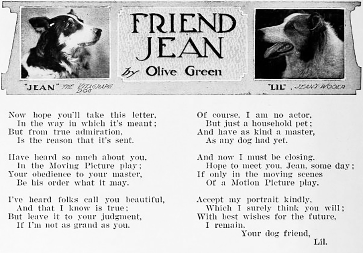 jean the dog, the vitagraph dog, rough collie, silent movies, dog film stars, silent films, actors, movie star, 1912, fan poetry, friend jean poem, olive green,