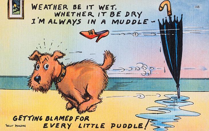 walt munson, american, cartoonist, artist, illustrator, comic strips, cartoons, funny, travel, postcards, 1940s, 1950s, dog, raining, umbrella, im always in a muddle,