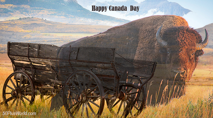 canada day, dominion day, canadian, flag, provinces, nature, scenery, western canada, alberta, foothills, wagon, bison, buffalo, wild animals