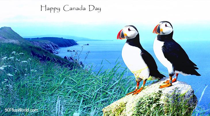 canada day, dominion day, canadian, provinces, flora, fauna, nature, scenery, wildlife, maritimes, atlantic canada, eastern canada, east coast, nova scotia, cape breton island, puffins, wild birds