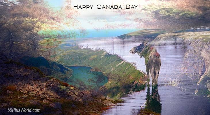 canada day, dominion day, canadian, provinces, flora, fauna, nature, scenery, wildlife, maritimes, atlantic canada, eastern canada, newfoundland, labrador, gros morne national park, moose