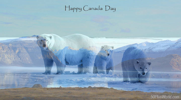 canada day, dominion day, canadian, provinces, nature, scenery, nunavut, northern canada, pangnirtung fjord, baffin island, polar bears, wild animals, winter, snow, ice