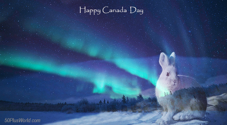 canada day, dominion day, canadian, provinces, nature, scenery, northwest territories, northern canada, yellowknife, northern lights, snowshoe hare, wild animals, winter, snow, ice