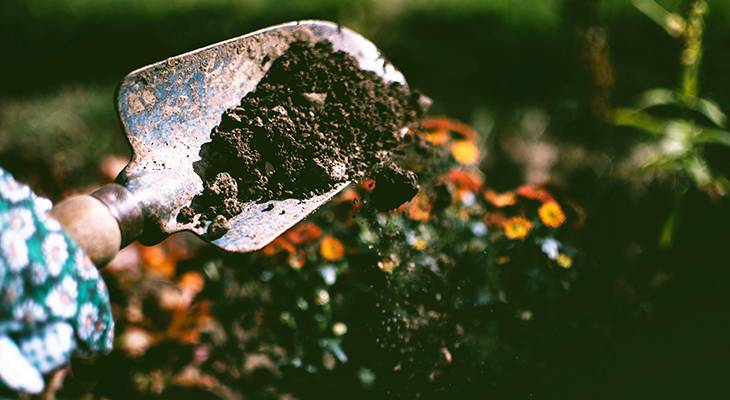 gardening, end of summer, late summer, tips, gardeners, soil, planting, spade, digging, earth,