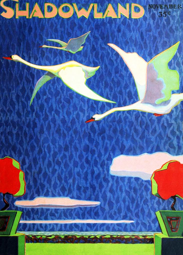 shadowland, magazine cover, art deco, paintings, watercolor, german american artist, a m hopfmuller, adolph m hopfmuller, brewster publications,1919, november